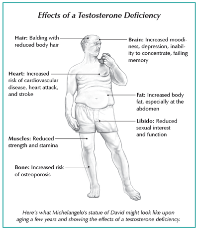 Diagram showing effects of a testosterone deficiency in men